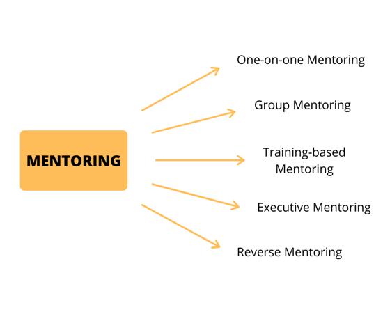 Types of Reverse Mentoring