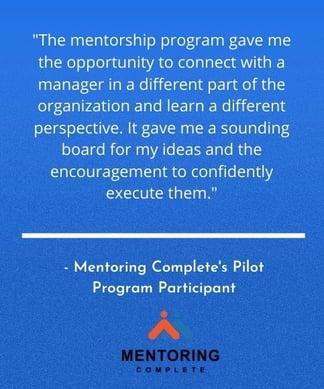 Mentoring Program Success