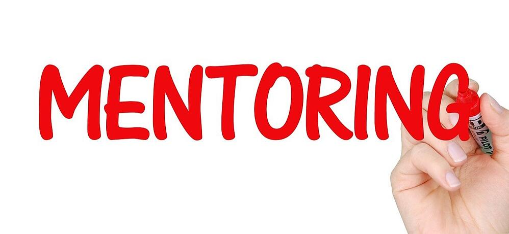 Career Mentoring