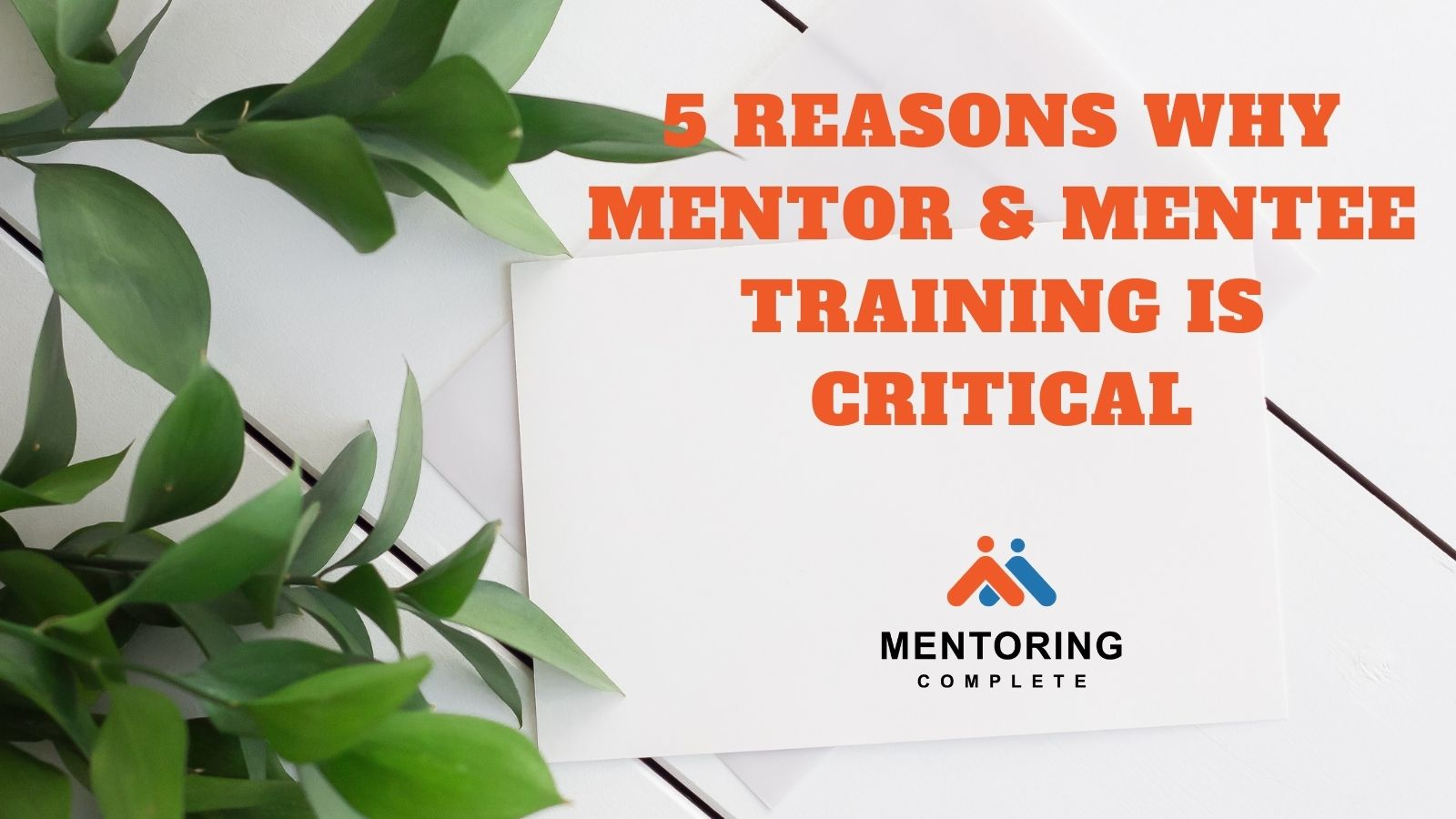 5 reasons why mentor and mentee training is critical