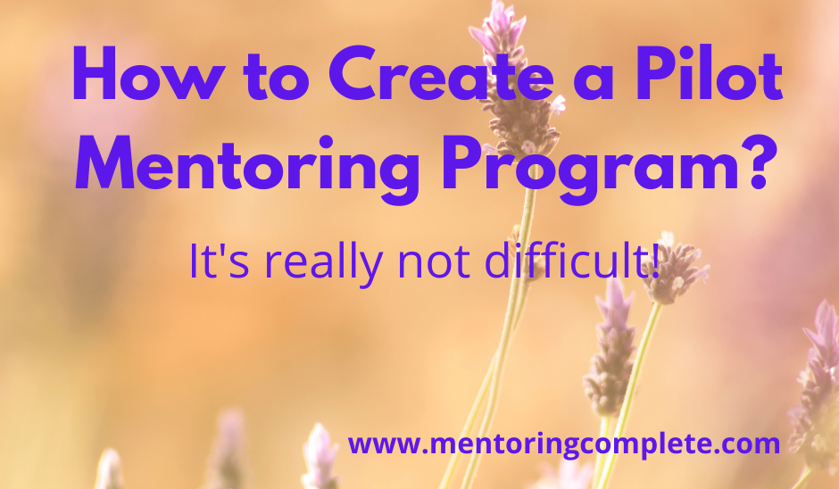 How to create a pilot mentoring program